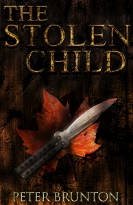 TheStolenChildebookcover
